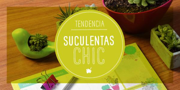 Tendencia 2016: Cactus y Suculentas